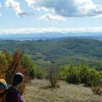 До връх Половрак, Лозенска планина