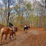 Разходка на коне край Княжево