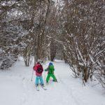 На Ски от Алеко до Симеоново