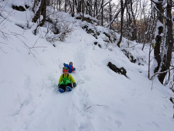 На Витоша с деца през зимата