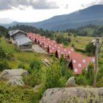 Хижа Вихрен - заслон Спано поле:  традиционнен летен преход с деца