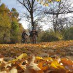 Обиколка на Панчаревското езеро с колела