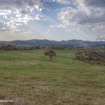 Банкя - Дивотински манастир: приятна обиколка по време на карантина