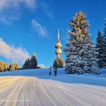 Алтернативна зимна почивка на Пампорово